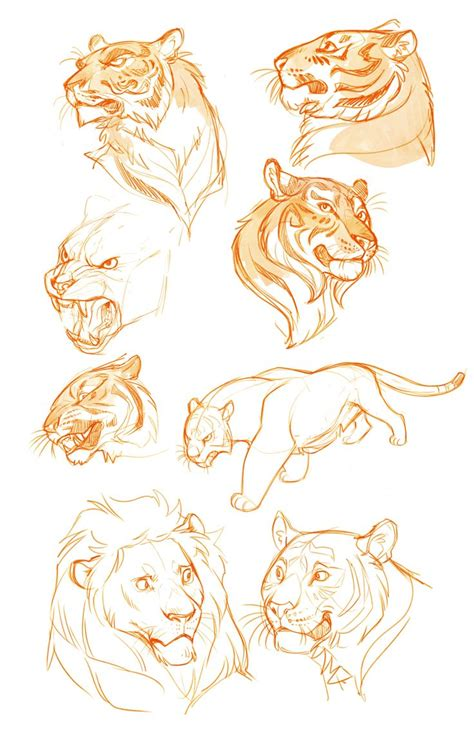 how to draw a doodle tiger 17 best ideas about cat drawing on cat