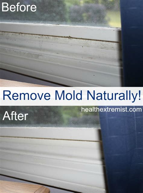 how to get rid of mold on the bathroom ceiling how to get rid of mold naturally 3 ways