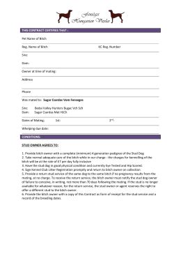 dog breeding contract template contract template image collections