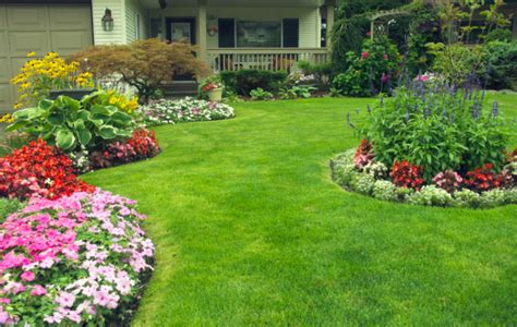 Backyard Ideas Center 7 Ideas For Your Landscaping Project Interior Design
