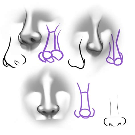Drawing Noses by Portrettekenen Zoeken Basis Portrettekenen