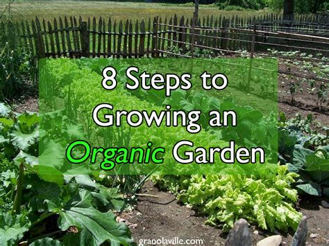 how to start an organic vegetable garden in your backyard organic vegetable garden movie search engine at search com