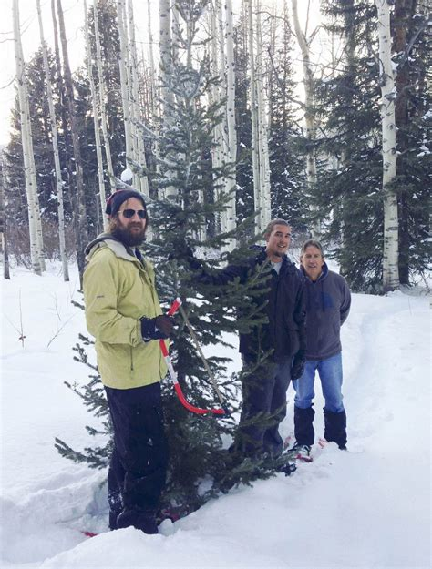 utah tree permits forest service us forest service again selling tree permits steamboattoday