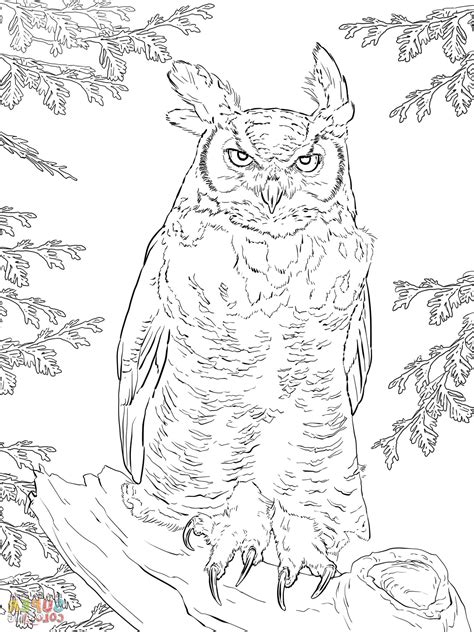 great horned owl coloring page great horned owl coloring