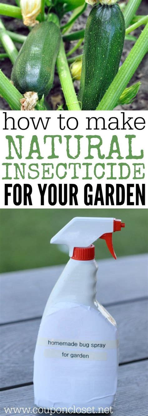 natural pesticides homemade insecticide