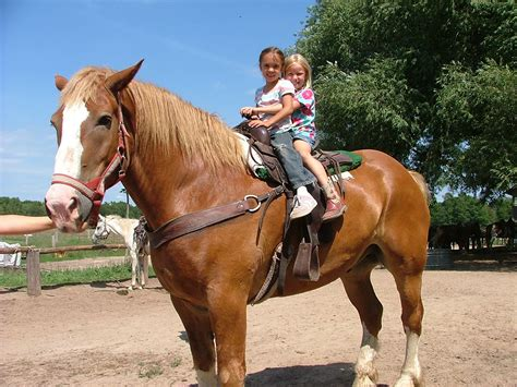 best kid friendly places for horseback riding in chicago