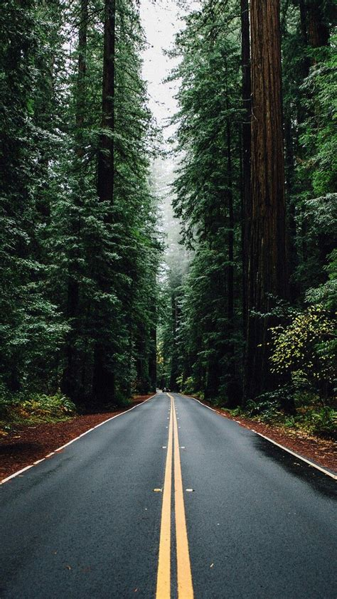 nature iphone wallpaper ideas  pinterest