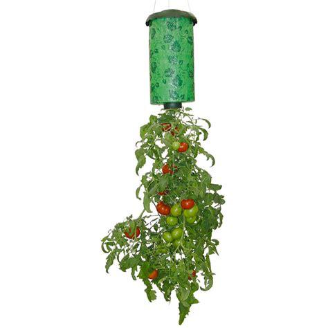 Inverted Tomato Planter by Original Jml Topsy Turvy Tomato Planter New Ebay