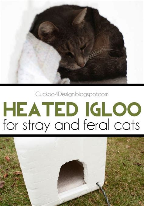 igloo dog house heating pad 17 best ideas about heated cat house on pinterest