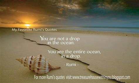 what s in a name every drop our strategies rumi quotes quotesgram