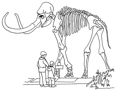 Fossils Coloring Pages fossil print dinosaur coloring pages