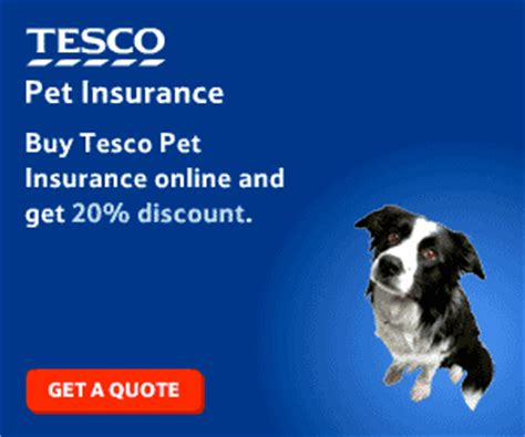 tescos house insurance sme branding lesson 11 be straight in your communications more than just a logo