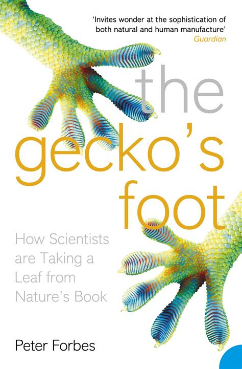 the gecko s foot how scientists are taking a leaf from - 0007179898 The Gecko S Foot How Scientists