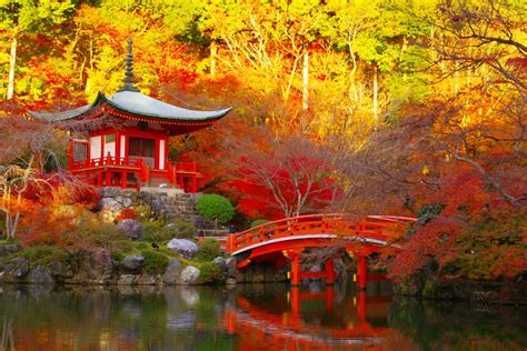 wallpaper daun momiji 今すぐ京都が恋しくなる 絶対に行きたい京都の 紅葉スポット 10選 retrip