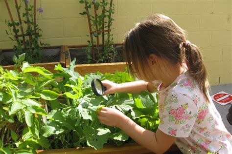 How To Decorate A Pot At Home How To Teach Kids About Plants Others Ask Nurserylive