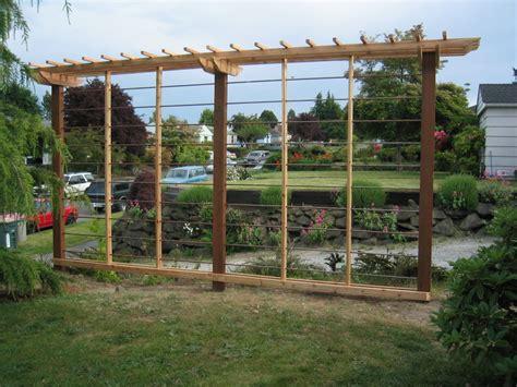 Hop Trellis Ideas hop trellis yard and garden ideas