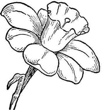 imagenes para pintar flores plantillas de flores on flores infantiles para colorear e