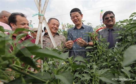 Benih Pare Hibrida bisi luncurkan benih baru di kediri