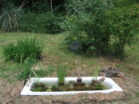 bathtub gardens top 28 tub pond robyn s 20 gallon tub pond page robyn s 20 gallon tub pond page