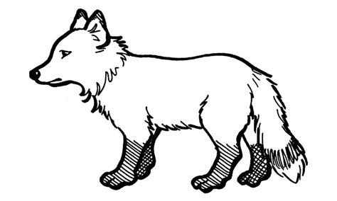 imagenes para dibujar de zorros dibujos de zorros para colorear y pintar
