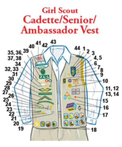 cadette sash diagram insignia placement cadette senior ambassador vest