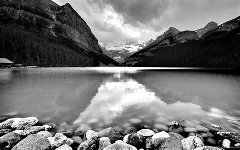 black and white nature wallpaper color beautiful nature hd wallpaper black and white free