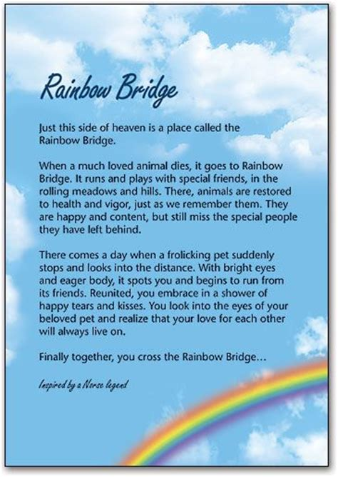 rainbow bridge poem for dogs pin by allen felix on for our 4 legged babies