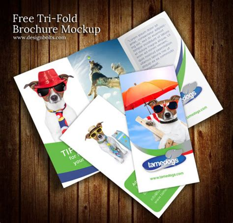 Couture Trifold Travel In Mock by A Collection Of Free Psd Brochure Mockups