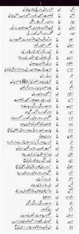theme meaning in urdu dictionary islamic names of boys in urdu