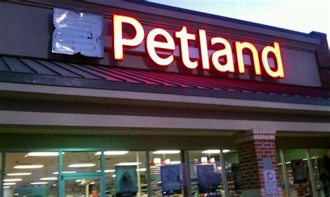 petland of athens closed pet stores 1720 epps bridge