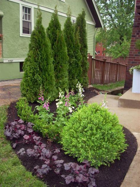 immergr ne pflanzen als sichtschutz 841 patio design ideen vorgarten gestalten