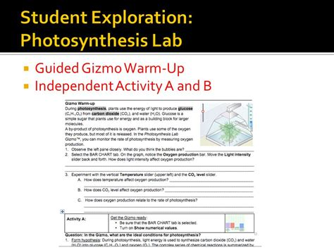 Biology 8 1 Energy And Worksheet Answers by 100 8 1 Energy And Worksheet Answers The