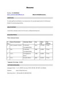 how to build an effective resume sles of resumes