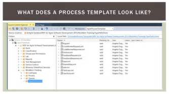 tfs build process template tfs 2013 process template overview