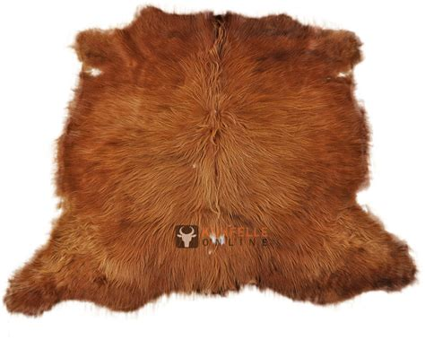 Highland Cow Hide Buy Scottish Highland Cattel Cowhide Kuhfelle Nomad