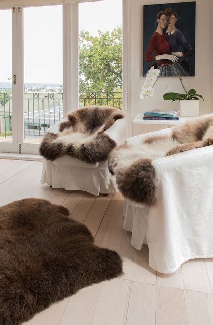 sheepskin rugs auckland new zealand sheepskin rugs traditional living room auckland by gorgeous creatures