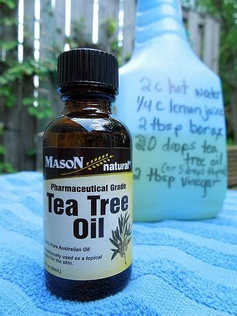 tea tree oil bathroom cleaner 22 best images about scrubbing bubbles on pinterest