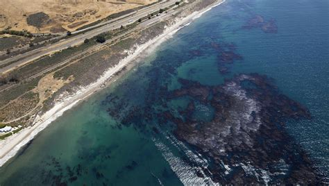 Sponge Criminal Record California Pipeline Company Indicted In 2015 Santa Barbara County