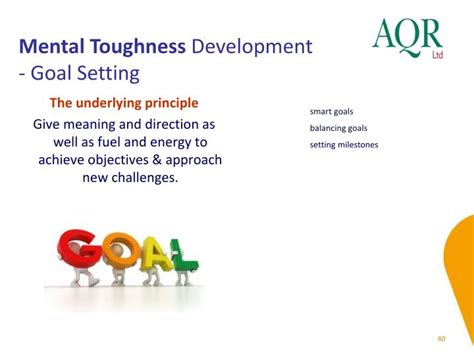 mental toughness achieve goals and conquer with an elite mindset books ppt mental toughness and mtq 48 powerpoint presentation