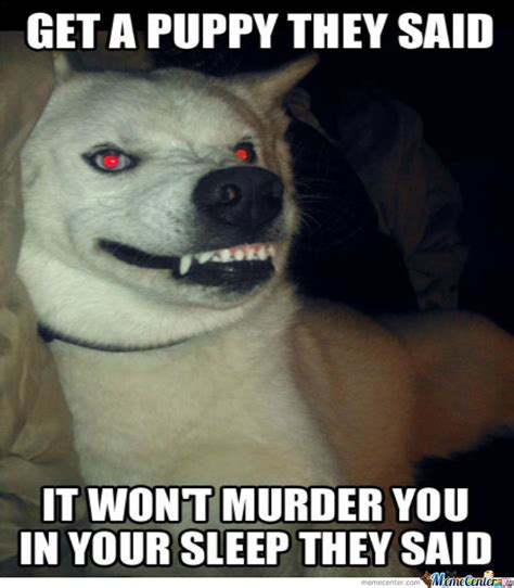 evil puppy silly evil puppy by recyclebin meme center