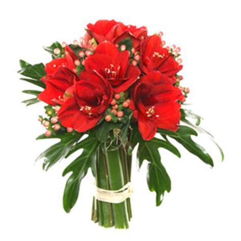 spedizioni fiori roma fiori a domicilio roma spedizione fiori roma