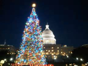 did you know these christmas tree facts days gone by