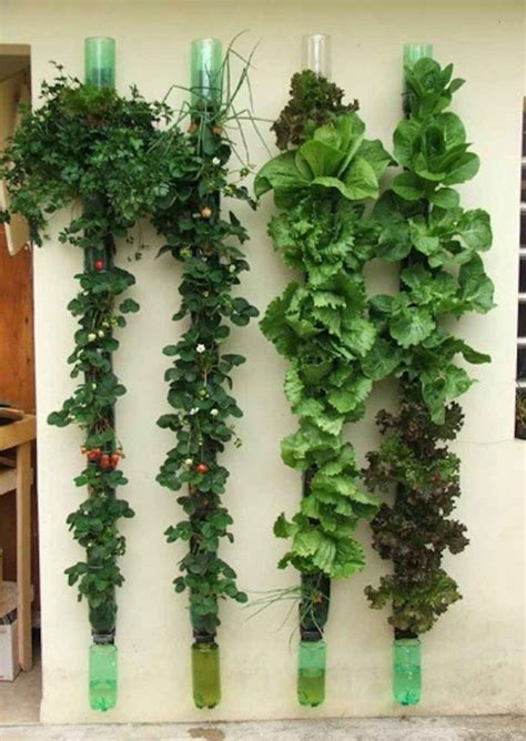 backyard vertical garden vertical garden ideas interior design
