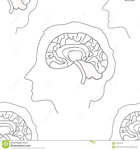 color pattern brain profile head person coloring coloring pages