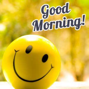 imagenes de good morning sister svegliarsi la mattina con una frase del buongiorno frasi