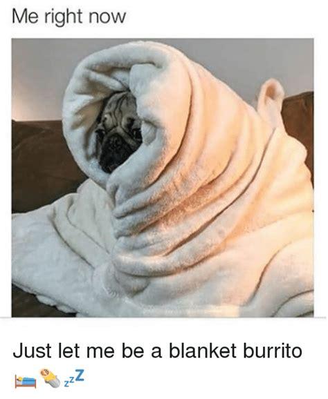 Meme Blanket - 25 best memes about blanket burrito blanket burrito memes