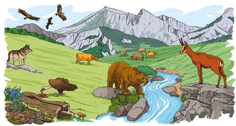 imagenes de ecosistemas naturales dibujos faciles de ecosistema terrestre imagui