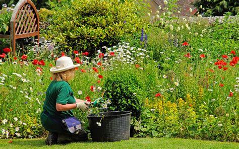 win   gardening voucher  bq