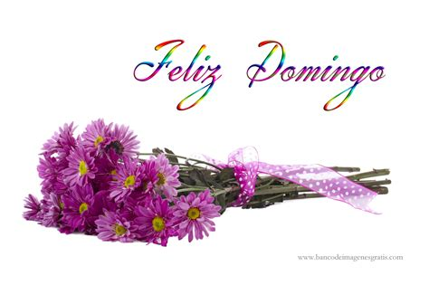 Imagenes De Feliz Sabado Y Domingo | feliz domingo happy sunday on pinterest domingo happy
