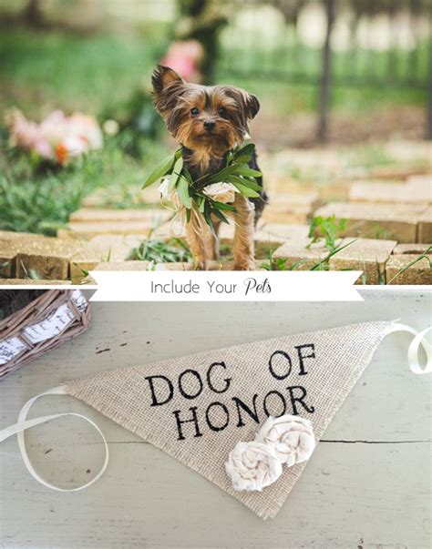 Wedding For Your Beloved Pet 12 incredibly ideas for your big day weddingsonline